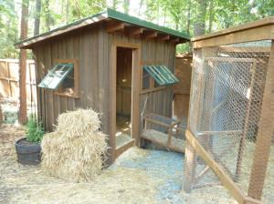 woodscapers-buildings-coop